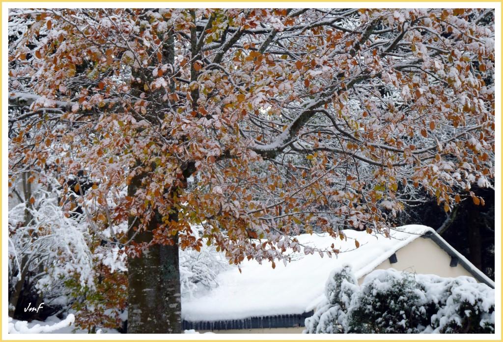 neige fraîche