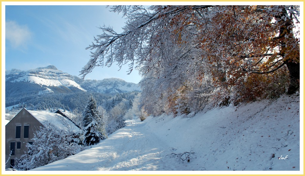 neige sur automne