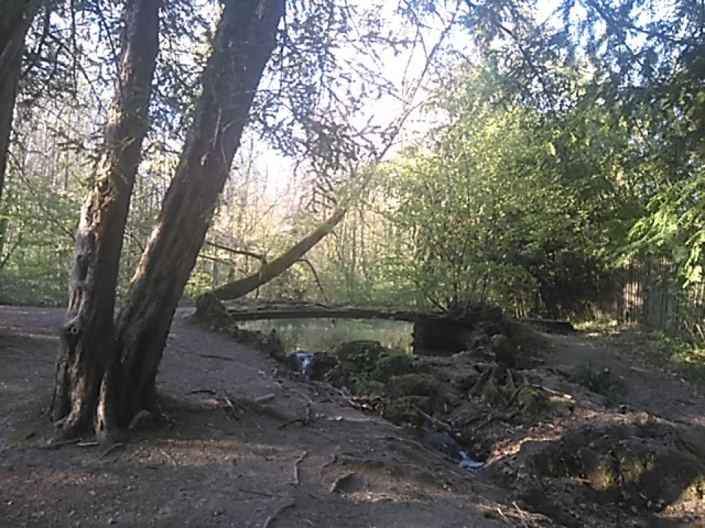 Parc des Etangs