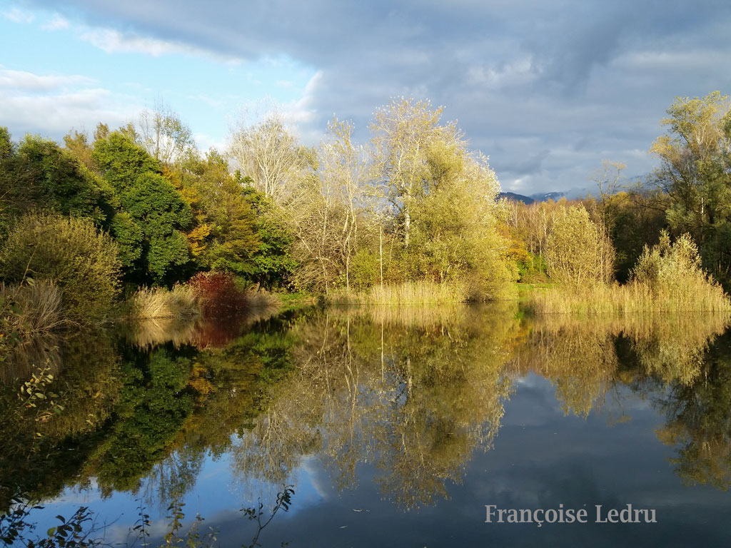 Rayon de soleil sur l'étang de Montfort