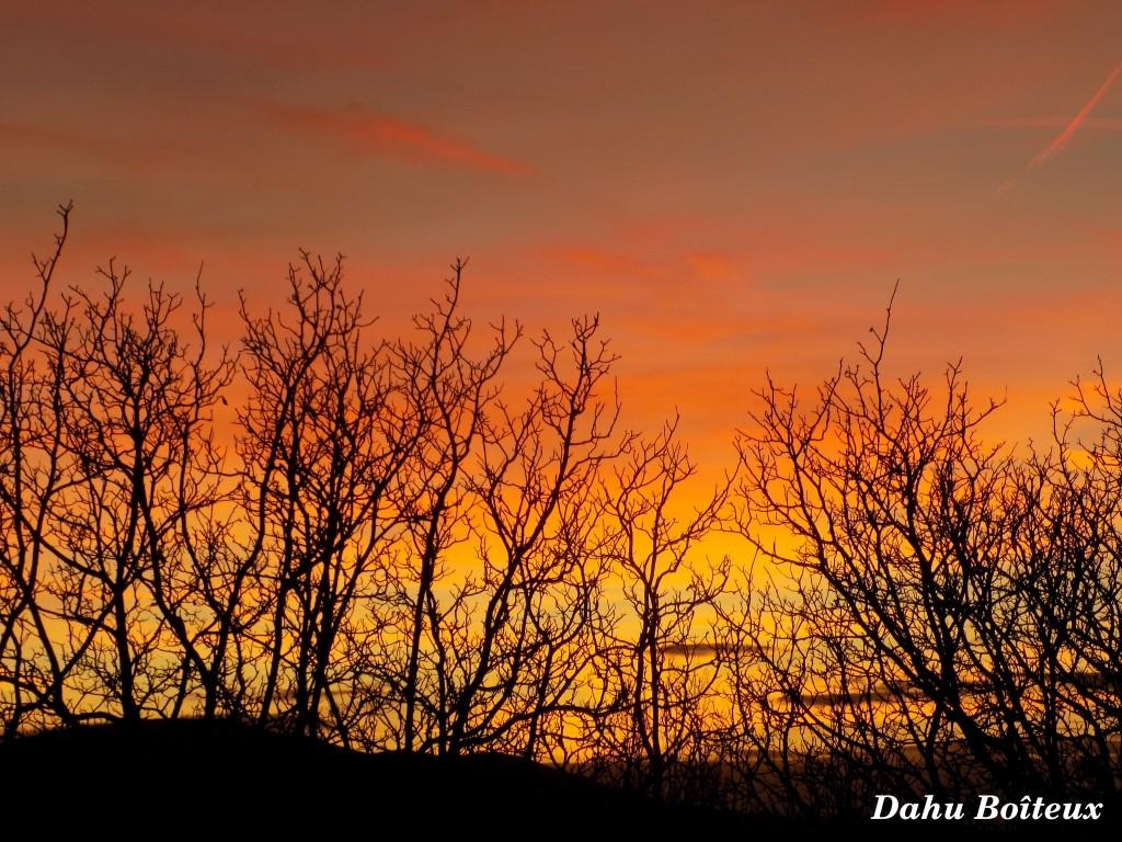 Ciel d'hiver flamboyant