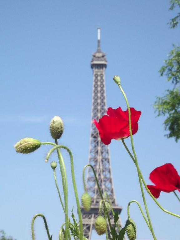 Image d'illustration pour Météo-Paris - Enfin du soleil et de la chaleur
