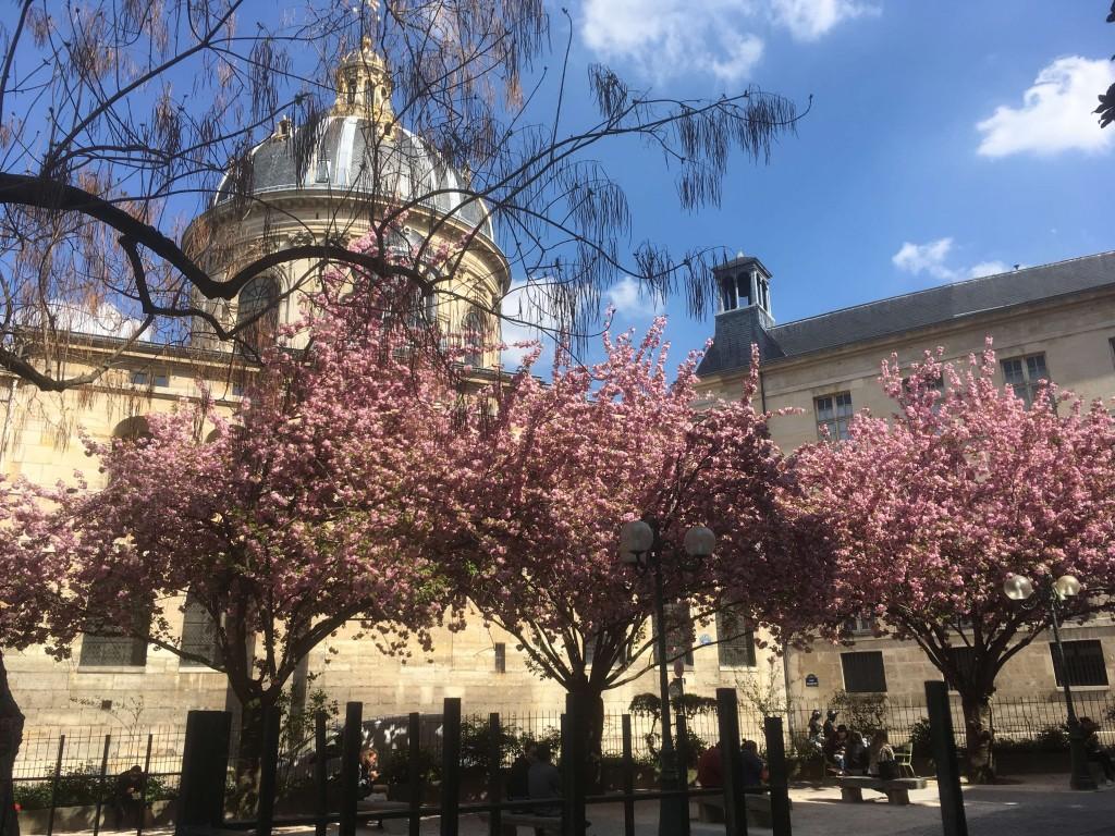 Photos m t o sur paris le premier site m t o pour paris for Vive le jardin 36250 saint maur