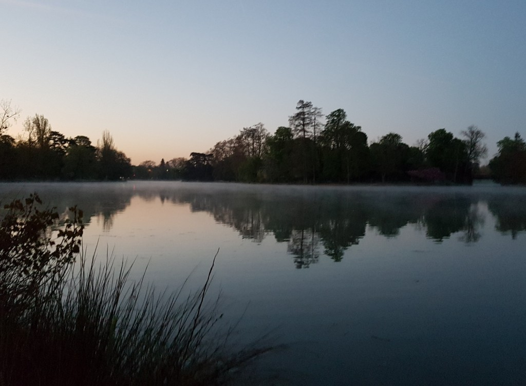 Brume sur le lac Daumesnil