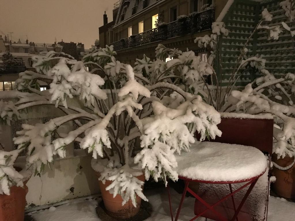 Lumière orange sur la neige à Paris