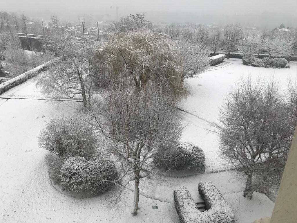 Neige fraîche à Saint-Cloud