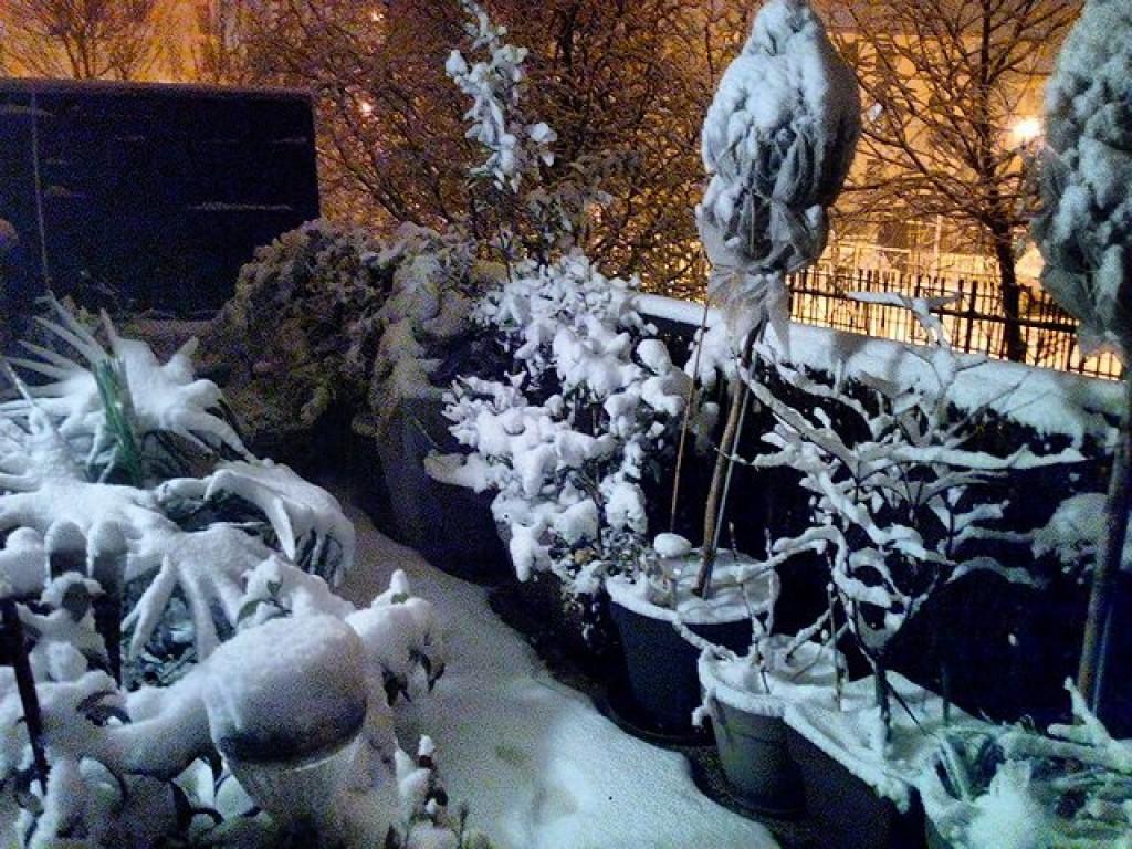 neige sur villeneuve le roi