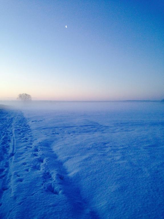 Plaine de Versailles sous la  neige