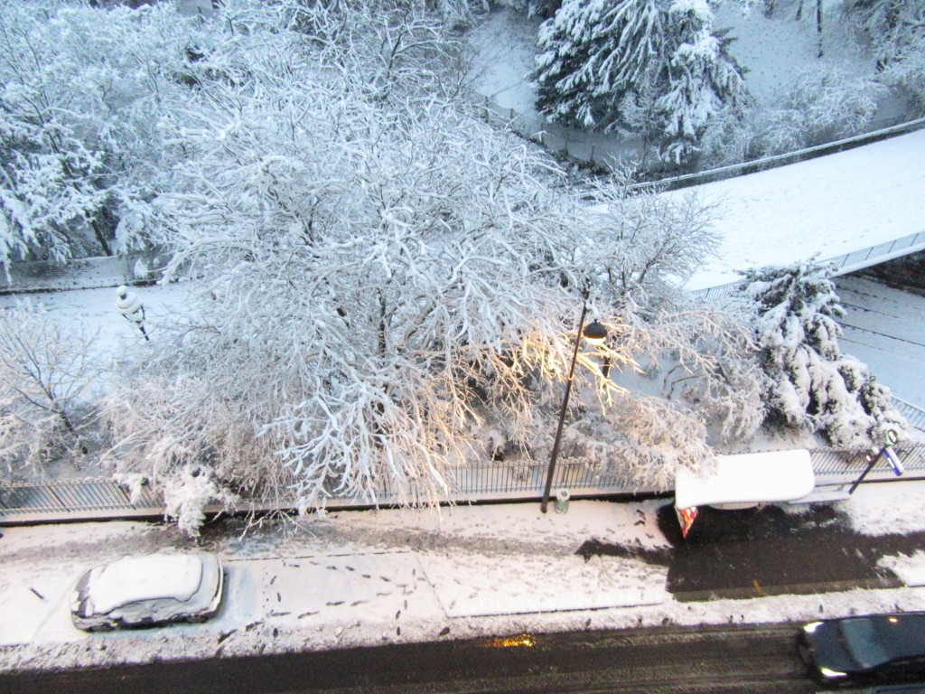 voiture sous couverture blanche