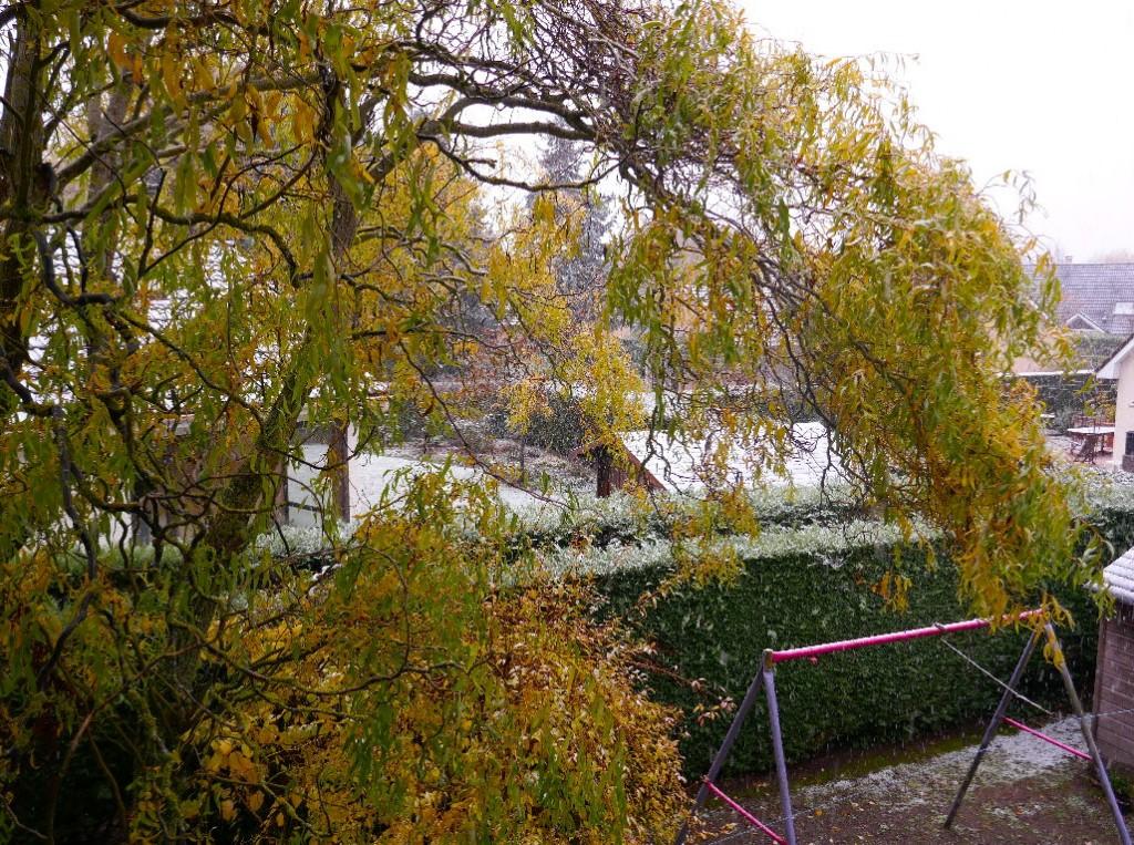 15 novembre : première neige
