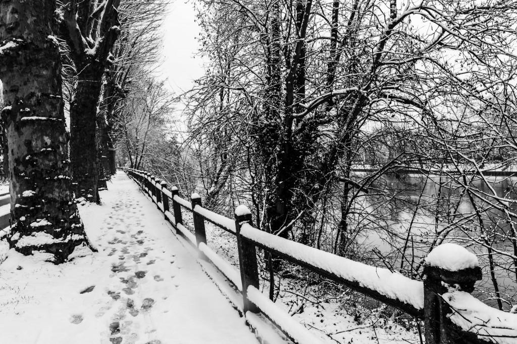 Bord de Marne sous la neige