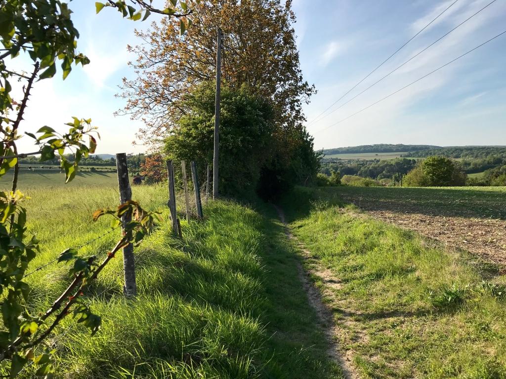 Le sentier creux qui ramène au village, le soir