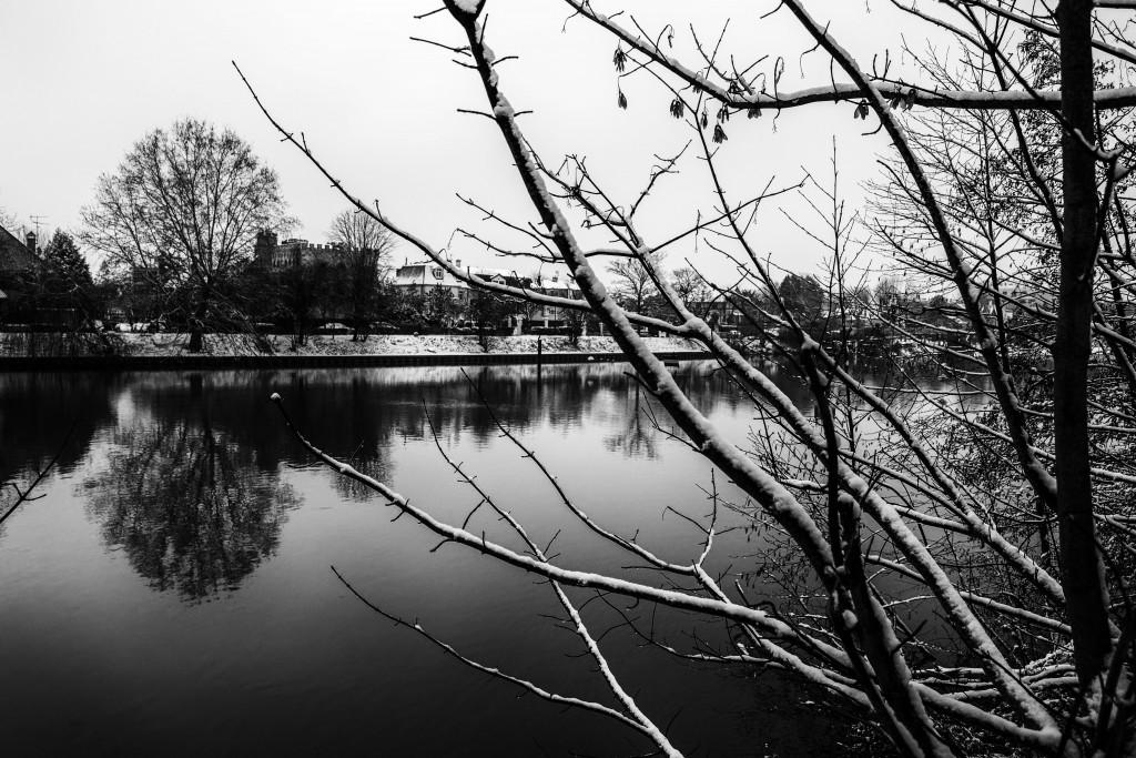 Marne hivernale