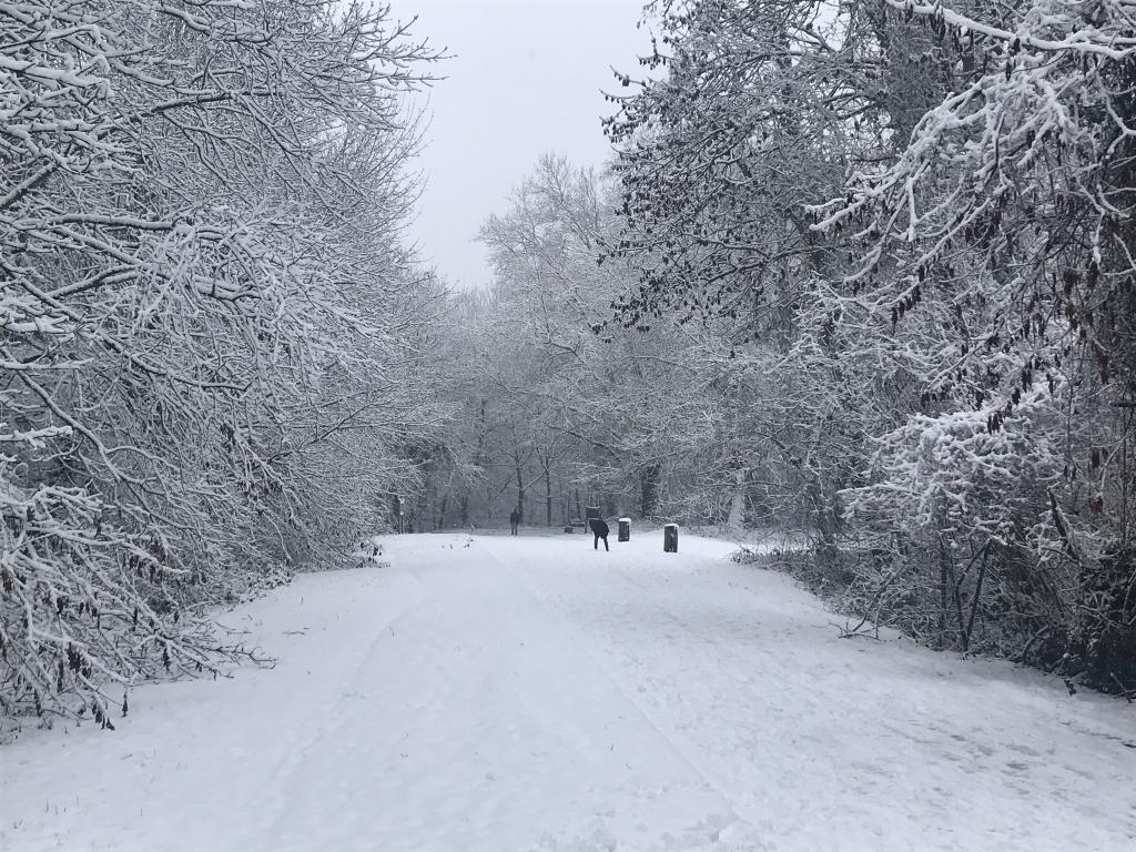Neige à Vélizy