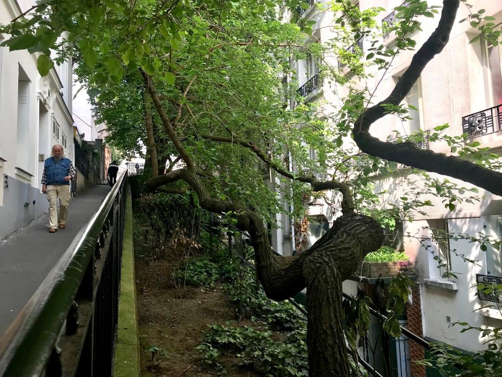 Rue du Chevalier de La Barre, en matinée