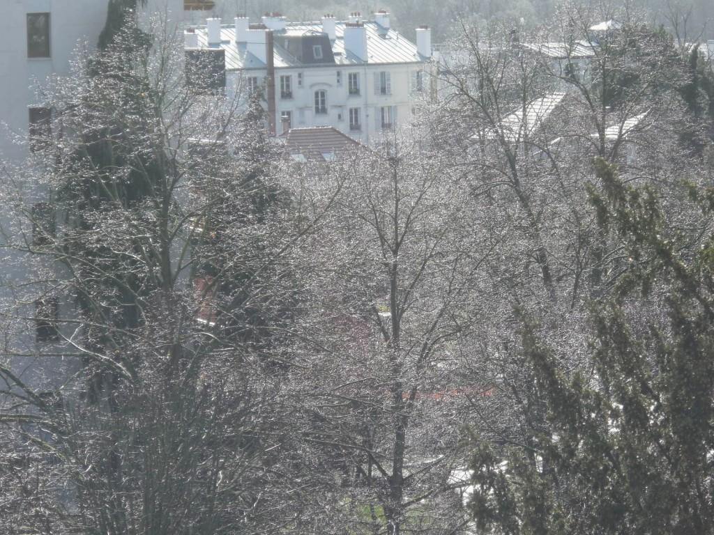 Ce n'est pas du à la neige mais après la pluie ,au soleil