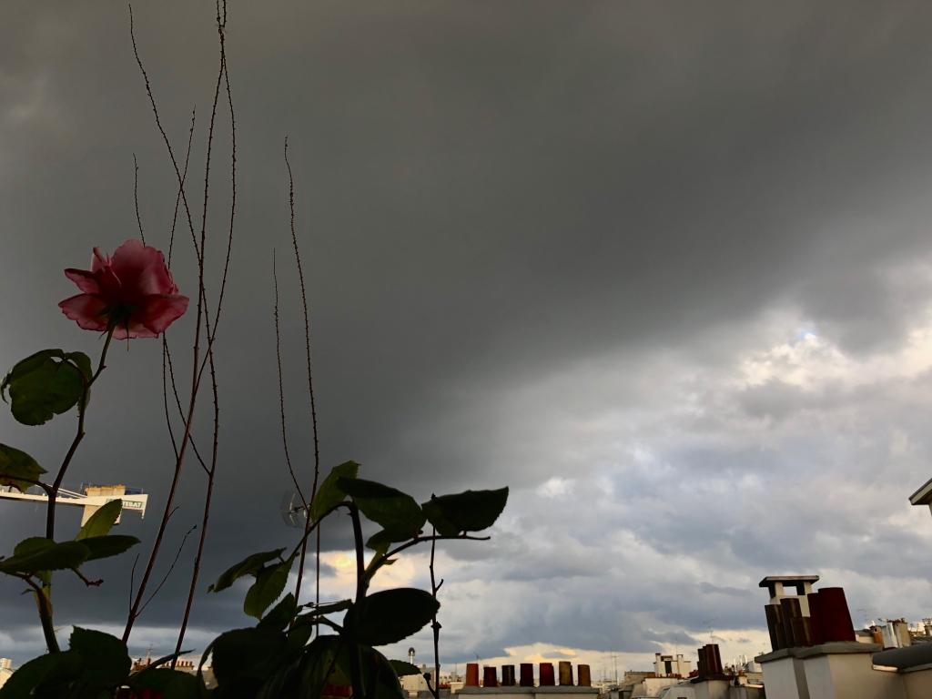 Quelques gouttes de pluie pour un nuage si sombre