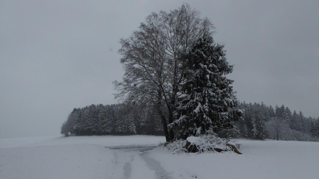 Il neige ici ce matin