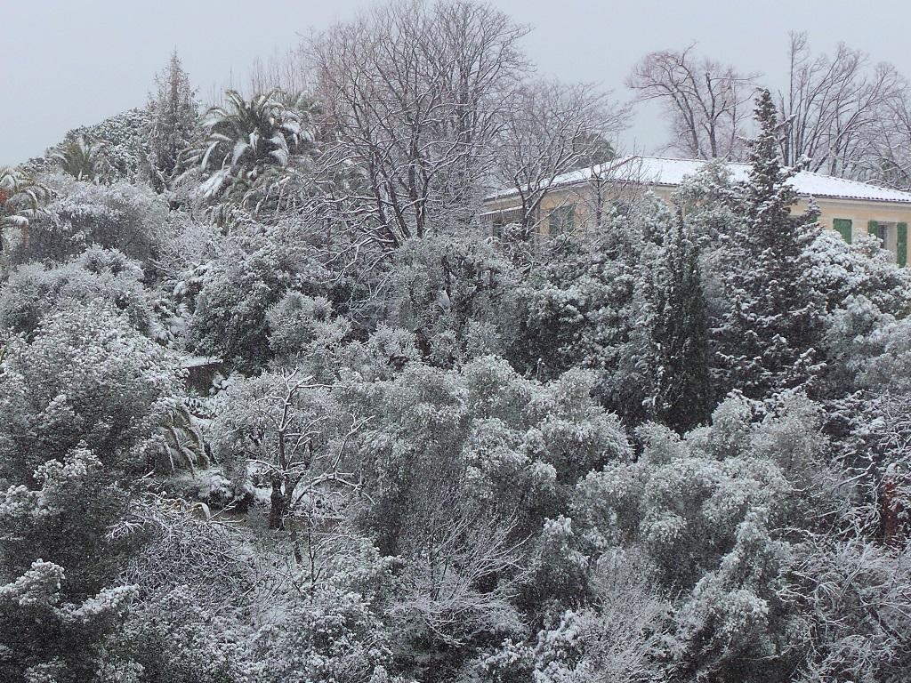 Neige à Saint Antoine Ginestière