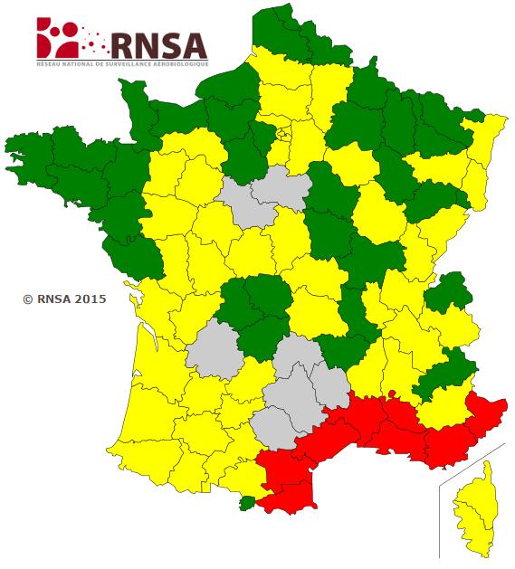 Image d'illustration pour Pollen et allergie : risque maximal en Méditerranée