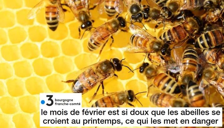 Image d'illustration pour Végétation en avance, pollens et allergies