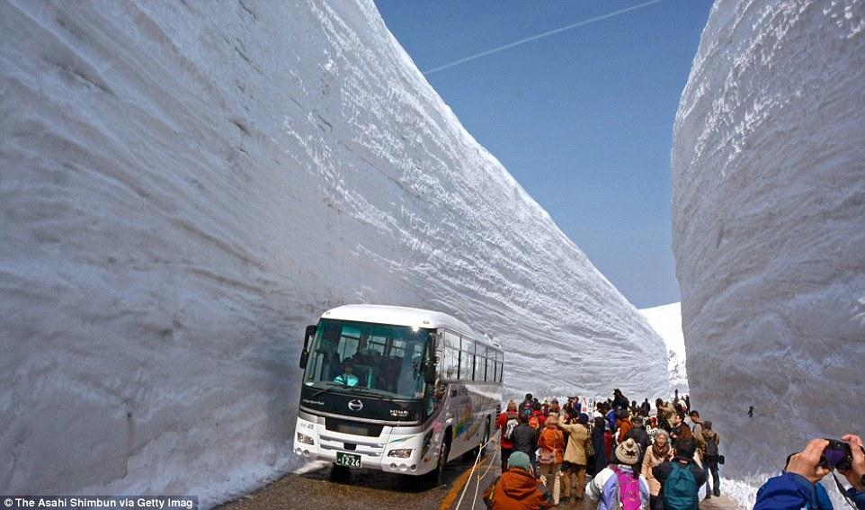 Image d'illustration pour Murs de neige sur la route Tateyama Kurobe au Japon