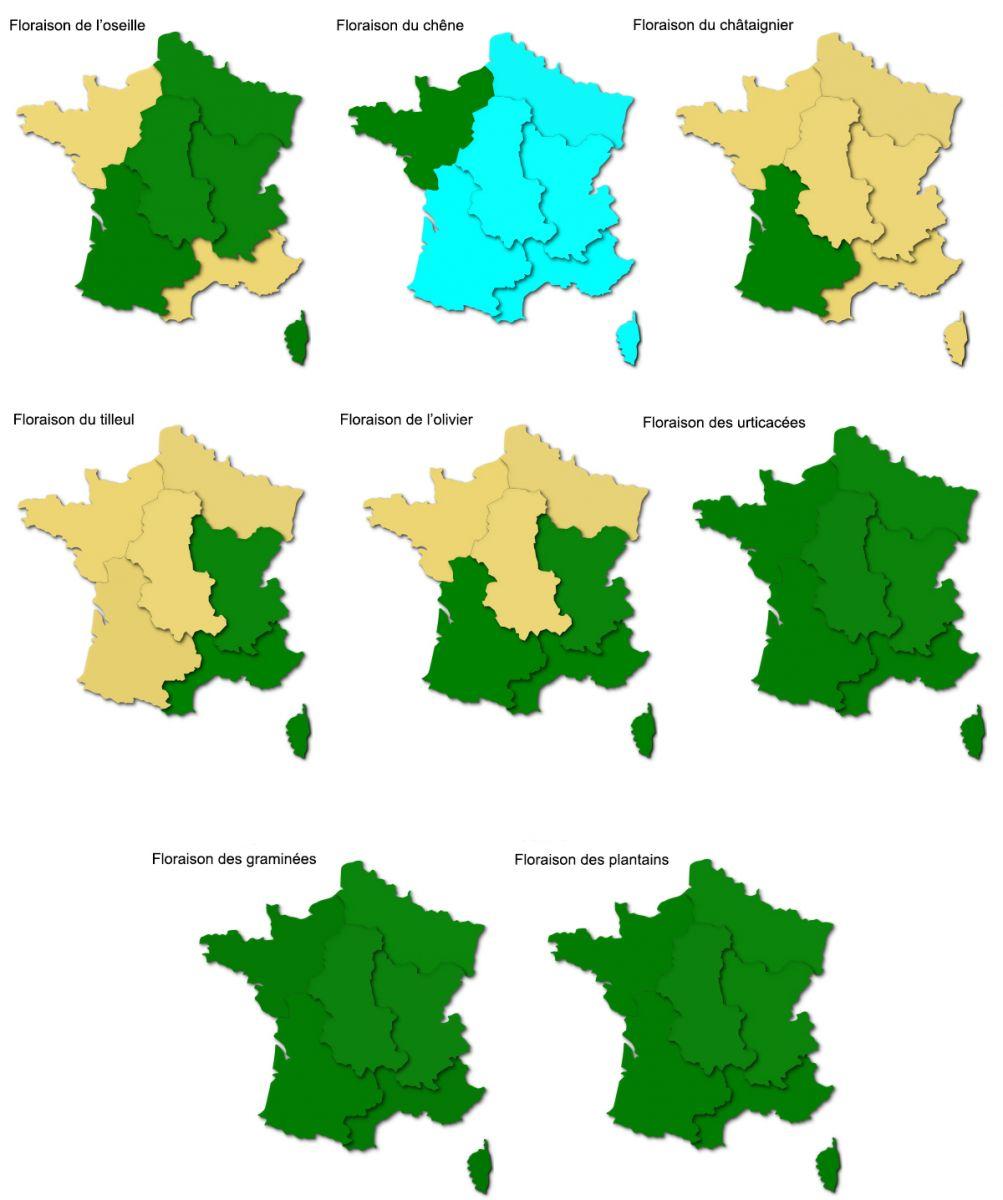 Pollens de graminées : le Rhône toujours en alerte rouge !