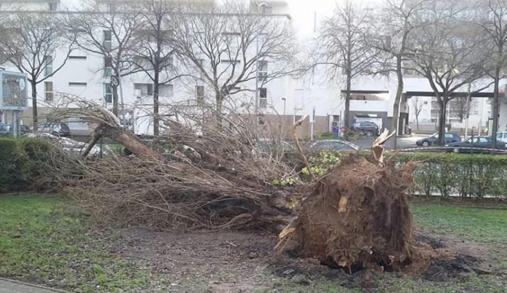 Image d'illustration pour Après Carmen, forte tempête Eleanor le 3 janvier