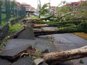 Image d'illustration pour Fakir : Tempête tropicale meurtière à La Réunion