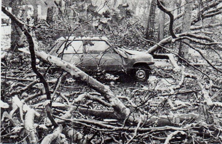 Image d'illustration pour 30 ans après la terrible tempête des 15 & 16 octobre 1987