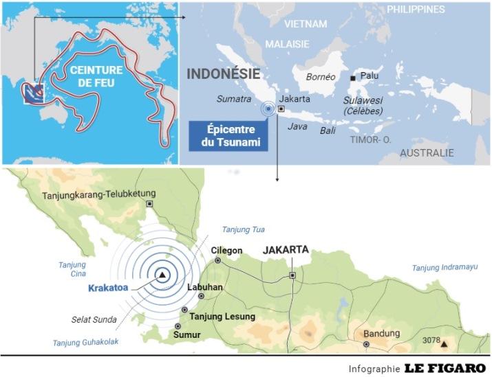 Image d'illustration pour Tsunami, raz-de-marée, mascaret et vague scélérate