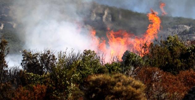 Image d'illustration pour Vent d'Est en Méditerranée - Chaleur et incendie en Corse